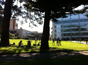 Students enjoy time outside between classes at San Francisco State University.